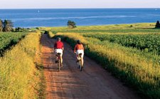 The Confederation Trail runs from one end of Prince Edward Island to the other.